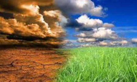India, Fight, Climate Change, Energy Source, Government