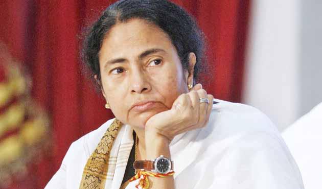 Political, Democratic System, Government, Mamata Banerjee