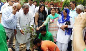 Target, Saplings, Campaign, Haryana