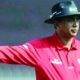 Indian, Elite Umpires, ICC, Ravi, Cricket