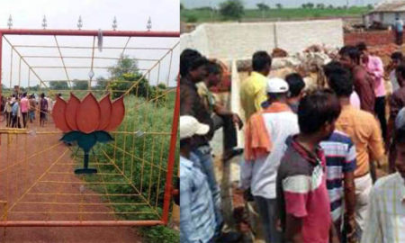 BJP Leader, Arrested, Cowshed, Cow, Death