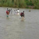 Heavy Rain, Ravi River, Flood, Alert, Punjab