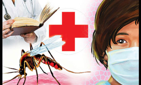 Malaria, Swine Flu, Disease, Haryana