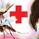 Malaria, Swine Flu, Disease, Haryana