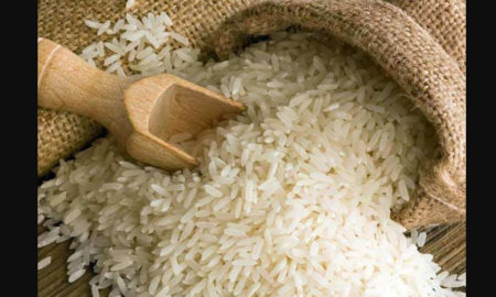 Busted, Basmati Rice, Fake, Bihar, Adulterant