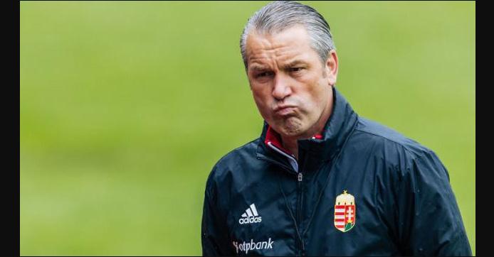 Hungarian, Football Coach, Stork, Sports