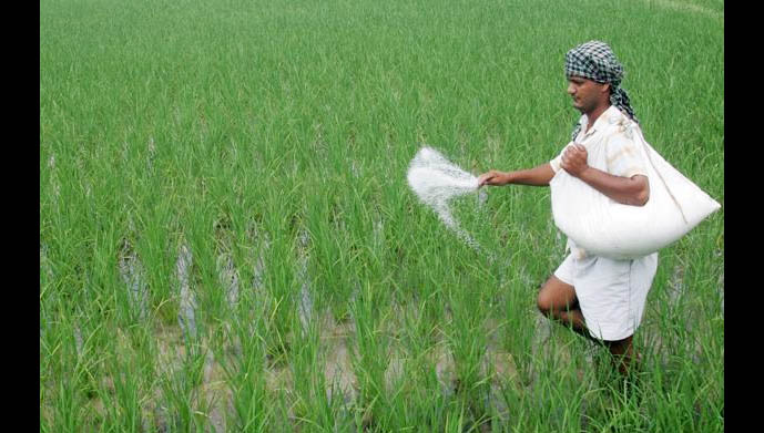 Farmers, Suffering,Badly, Agriculture, Crisis, India