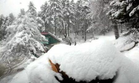 Srinagar, Avalanche, Dead, Injured