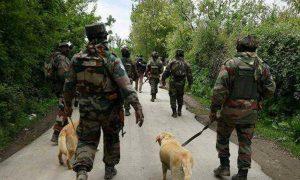 Security Forces, Launch, Caso, South Kashmir
