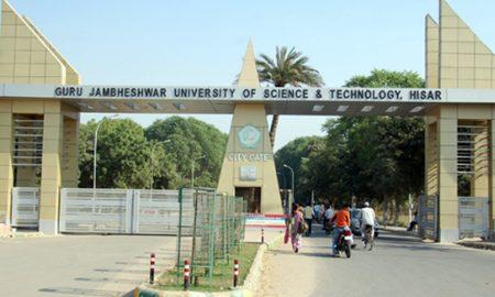 University Topper, Sucheta, Vibhuti, MBA, Haryana