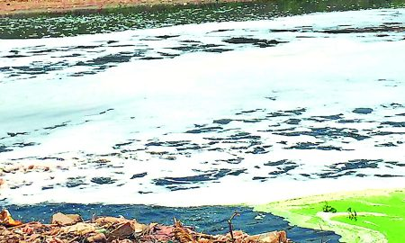 Toxic Water, Factories, Ghaggar River, Punjab