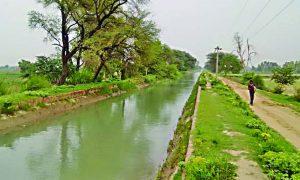 Groundwater, Level, Rapidly, Haryana