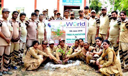 Tree Planting, Dera Sacha Sauda, Saint Dr. MSG
