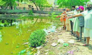 Sewerage, Parks, People, Punjab
