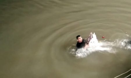 Mama, Submerged, Save, Niece, Pinkcity
