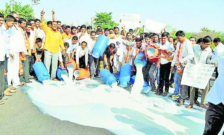 Farmer, Protest, Sheded, Milk Roads, funky, Vegetables,