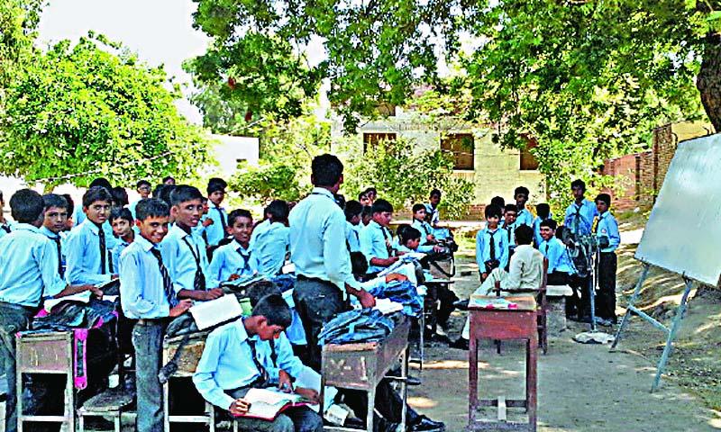 Education, Public, Culture