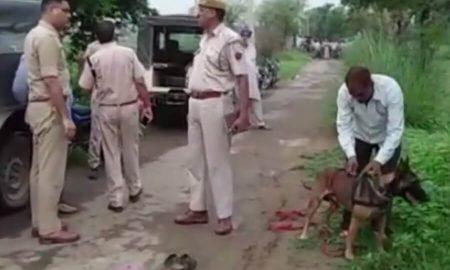 Cow Trafficking Case, Alwar, dead, Rajsthan