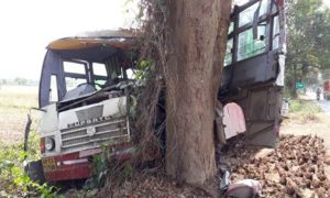 Bus, Collides, Tree