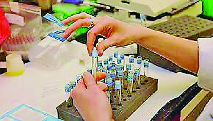 Whether, Candidate's Dope Test, Necessary, Panchayat Elections, Decision Today