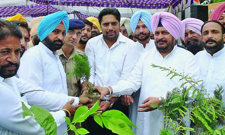 2 Million Plants, Planted, Punjab State