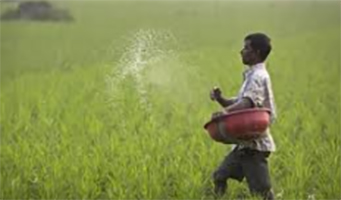 Farmers Rajasthan