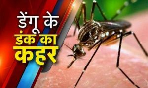 Mosquitoes, Aligarh, Police