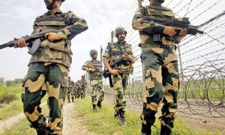 Kashmir: Security Forces In Kulgam
