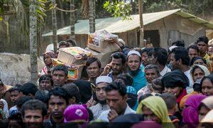 India, Send, Rohingya, Back