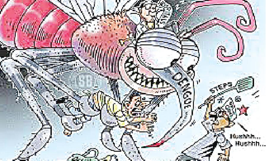 Three die from dengue in Munic during two weeks