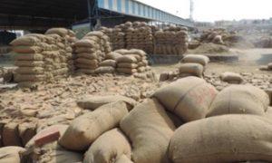 58 lakh tonnes paddy