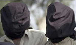 Hizbul militants