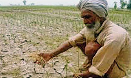 Jai Jawan, The Farmer Disturbed