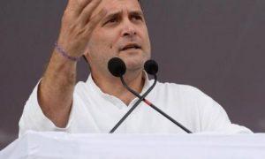 Congress PresidentRahul Gandhi