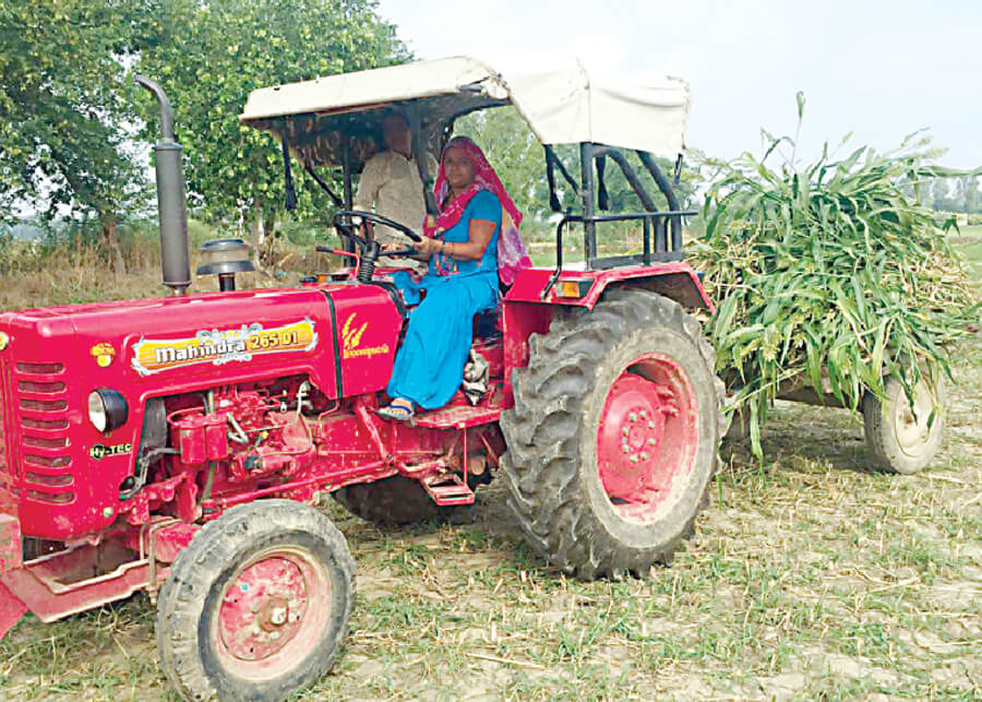 Husband Serving The Army And Wife Handling Farming