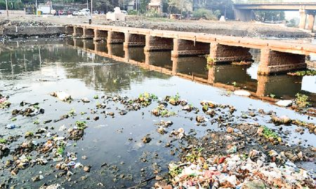How will Punjab be clean like this?