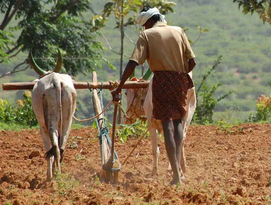 Government Can Soon Grant Package For Relief To Farmers