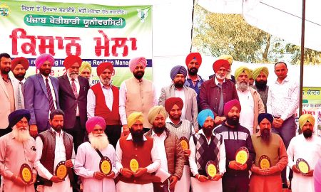 More Than 30 Progressive Farmers, Honored, Punjab