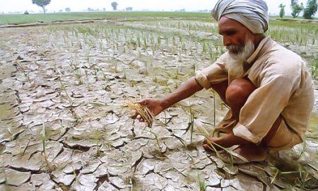 Farmers in the center of politics