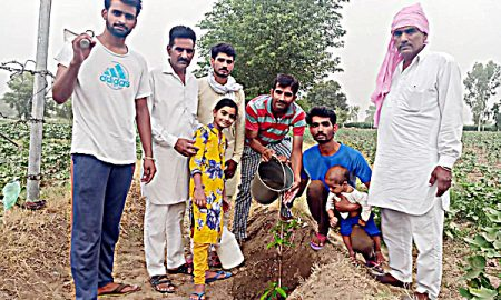 Dera Sacha Sauda has taken up the cause of environmental protection
