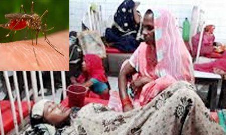 Japanese encephalitis in Assam, 50 killed in Assam