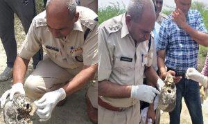 Bhiwani, Massacre