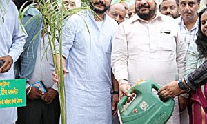 house-to-house-plant-campaign-start-in-dhuri