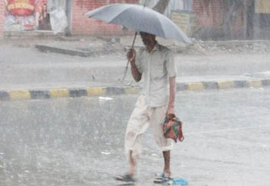 Rain deficiency in five districts of Rajasthan