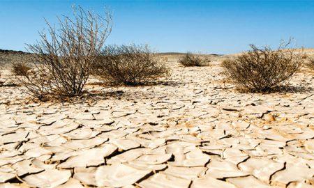 barren land Sign of serious crisis