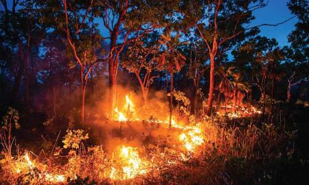 Fire of Australia?