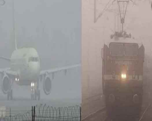Fog havoc