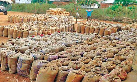 Paddy scam Paddy worth Rs 90 crore missing Haryana mills