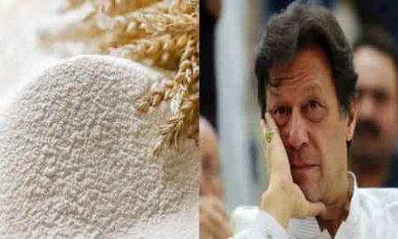 flour in Pakistan