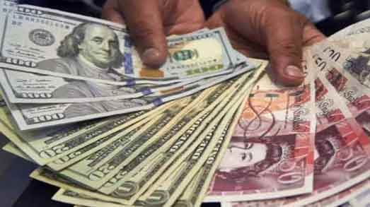 Foreign exchange reserves reached record level for 15th week